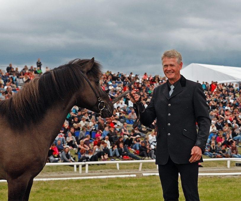 honour prize stallion stáli frá kjarri