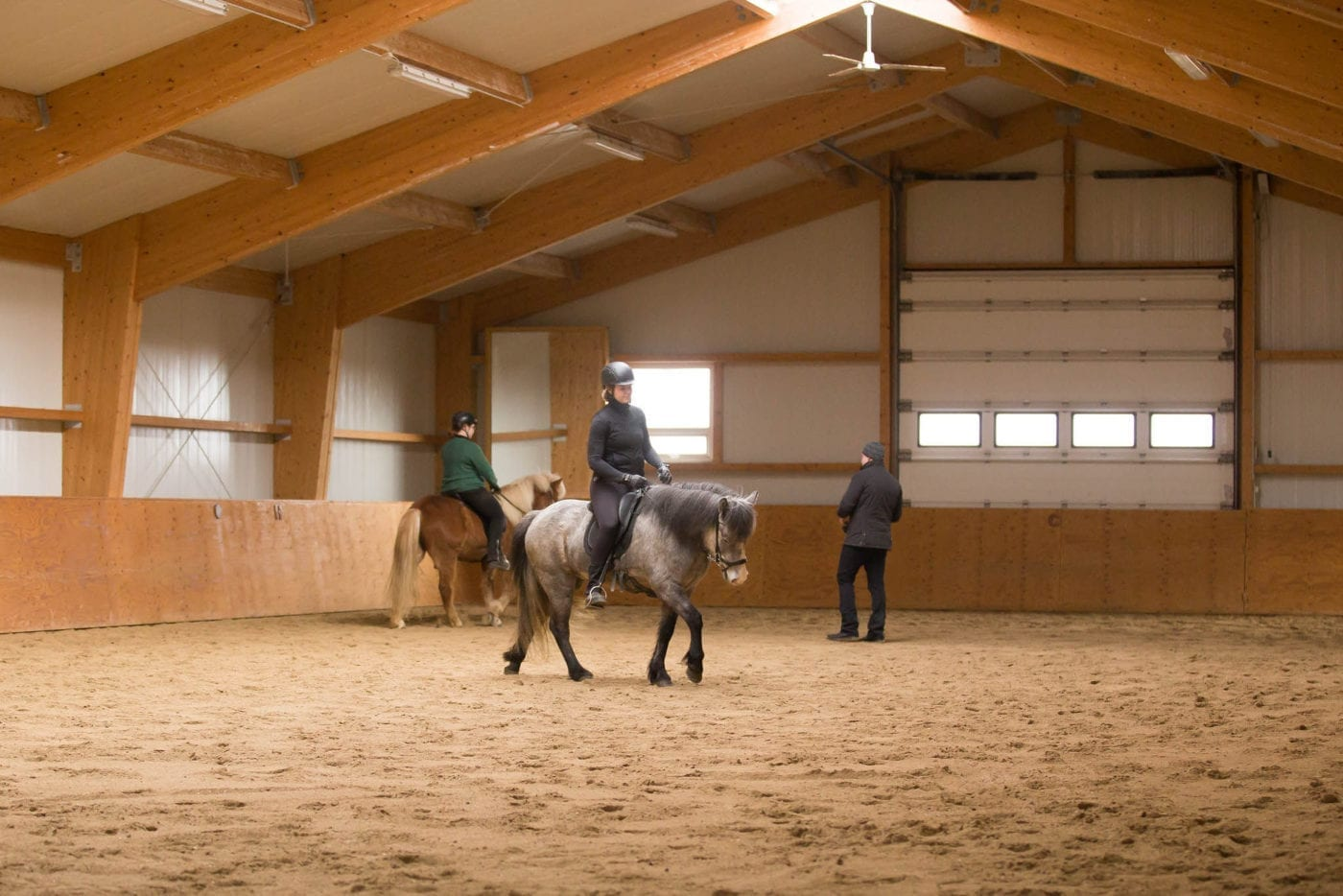 Teaching and training in the riding arena in Kjarr